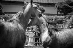 boda-victoreirene-rubenalbarran-fotografo_105